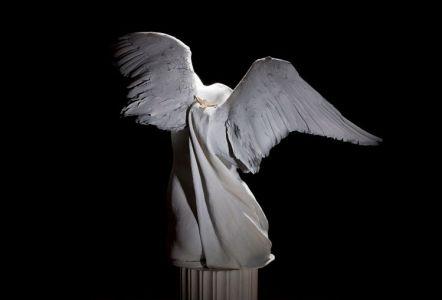 Angel, Verso